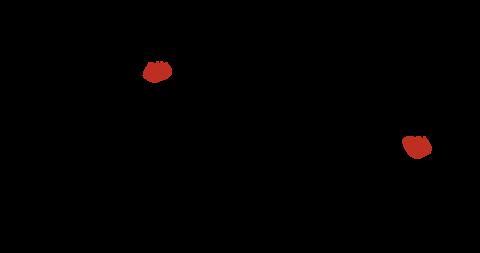 Logo Fundacji Viva!